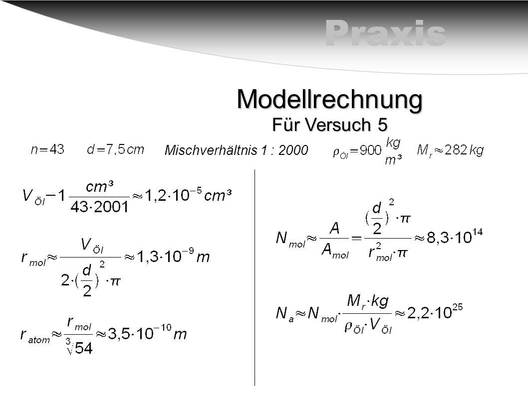 Praxis Modellrechnung Für Versuch 5 Mischverhältnis 1 : 2000