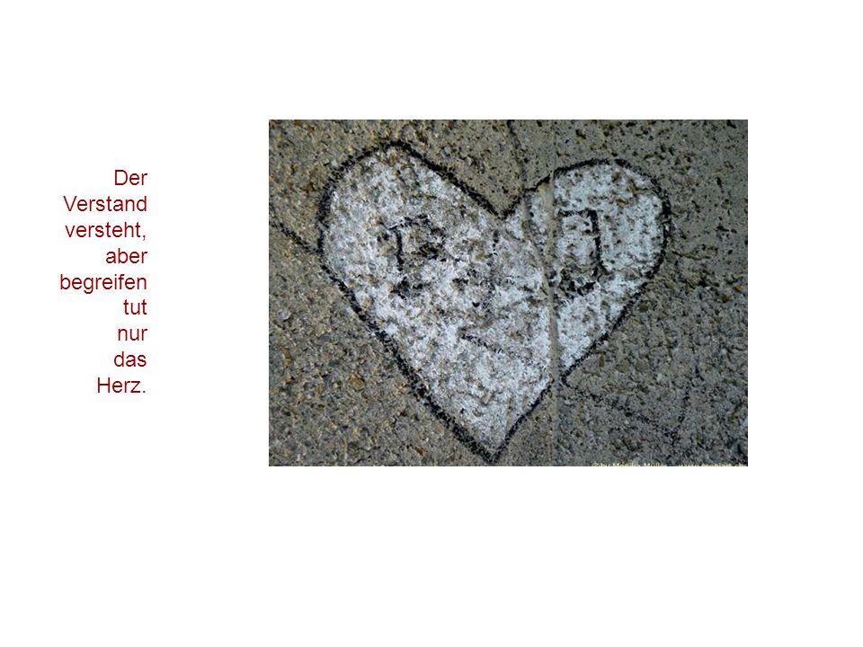 Der Verstand versteht, aber begreifen tut nur das Herz.