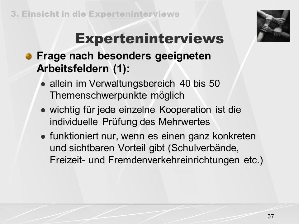Experteninterviews Frage nach besonders geeigneten Arbeitsfeldern (1):