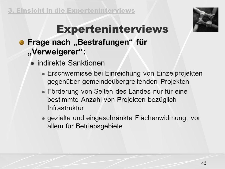"""Experteninterviews Frage nach """"Bestrafungen für """"Verweigerer :"""