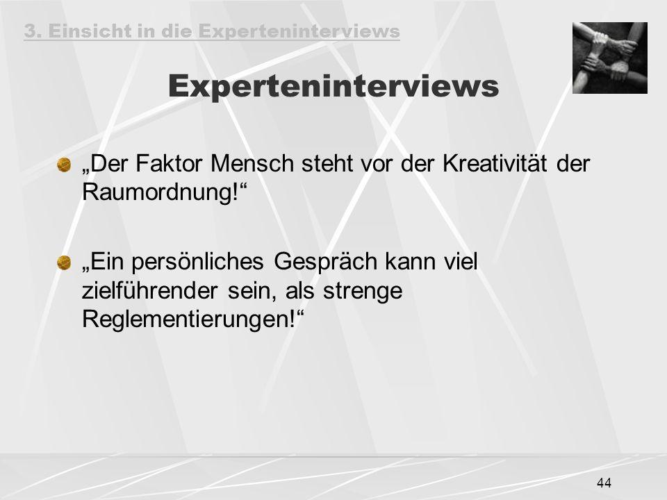 3. Einsicht in die Experteninterviews