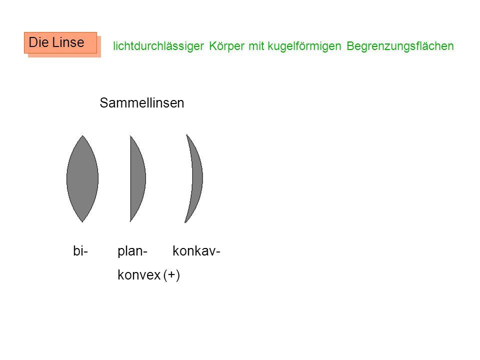 Die Linse Sammellinsen bi- plan- konkav- konvex (+)