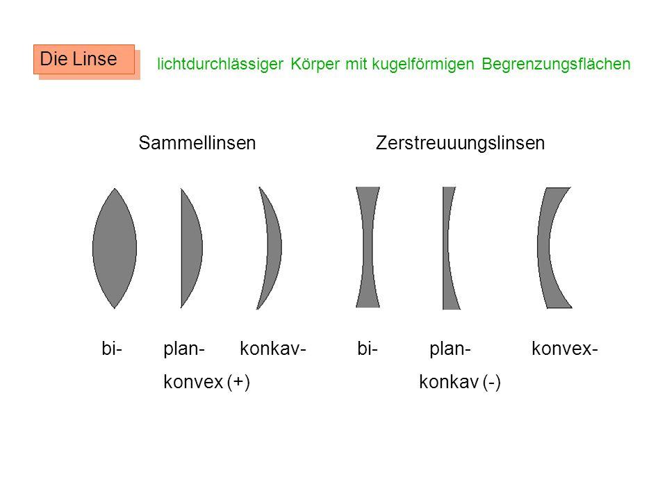 Sammellinsen Zerstreuuungslinsen