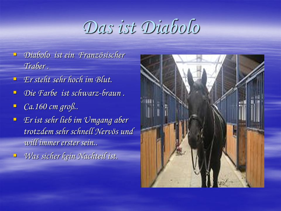 Das ist Diabolo Diabolo ist ein Französischer Traber .