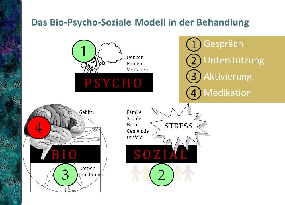 Das Bio-Psycho-Soziale Modell in der Behandlung