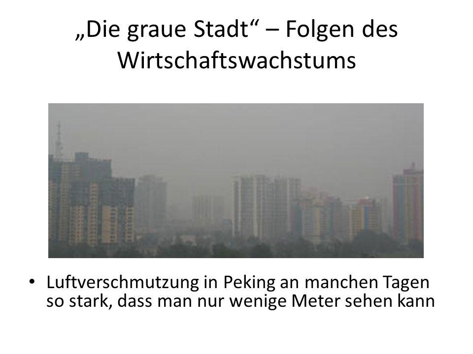 """""""Die graue Stadt – Folgen des Wirtschaftswachstums"""
