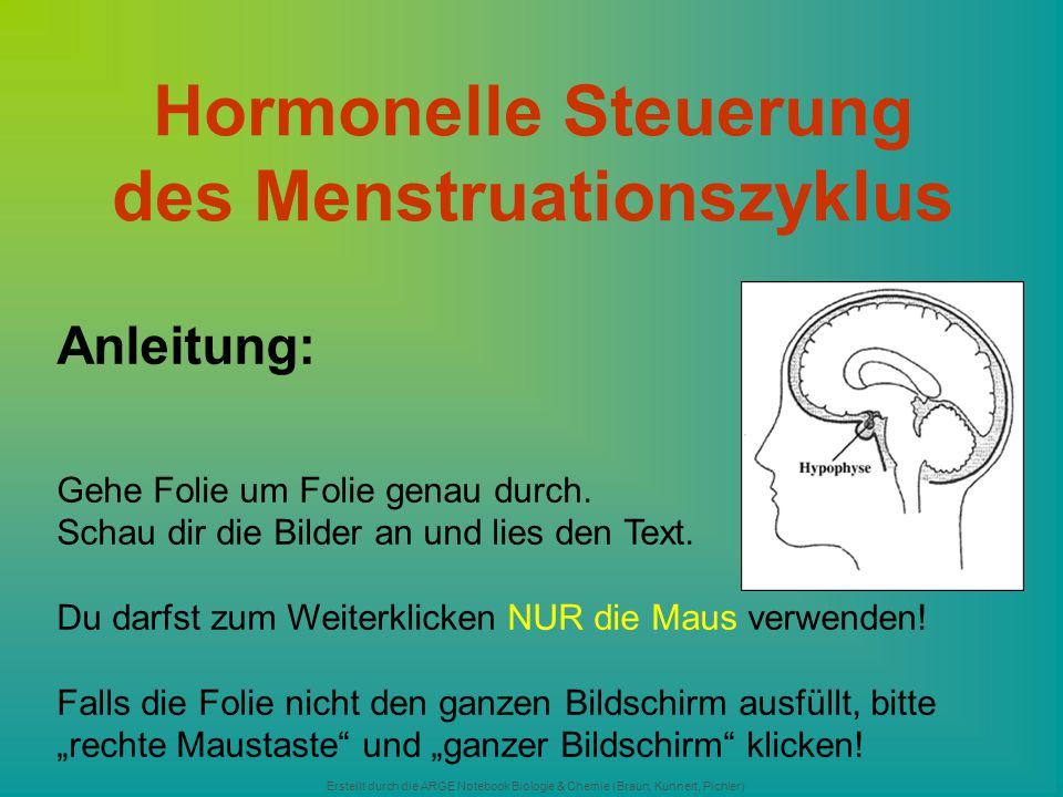 Hormonelle Steuerung des Menstruationszyklus