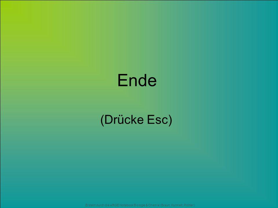 Ende (Drücke Esc) Erstellt durch die ARGE Notebook Biologie & Chemie (Braun, Kunnert, Pichler)