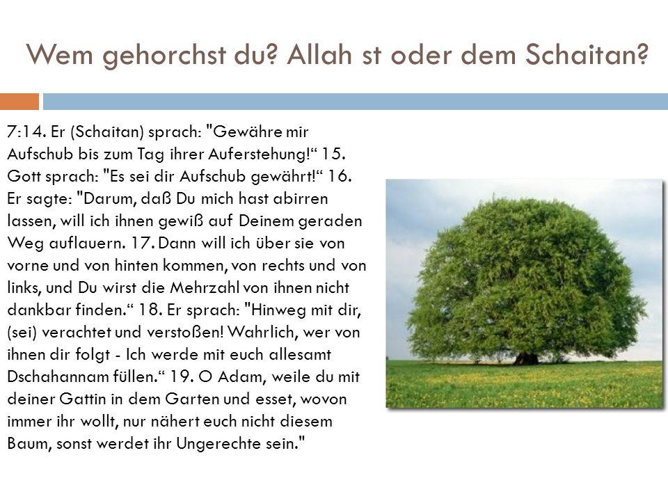 Wem gehorchst du Allah st oder dem Schaitan