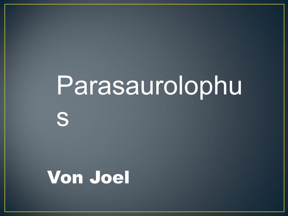 Parasaurolophus Von Joel