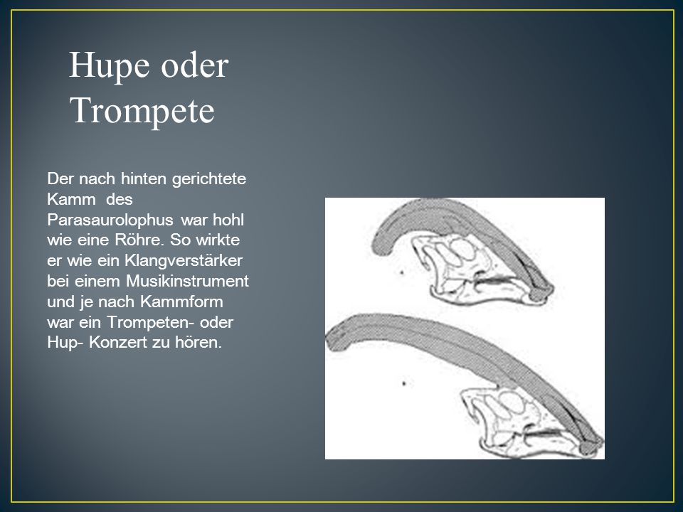 Hupe oder Trompete