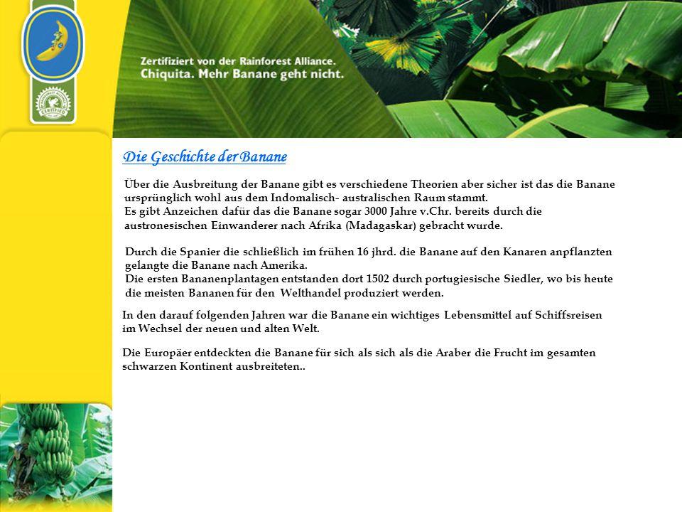 Die Geschichte der Banane