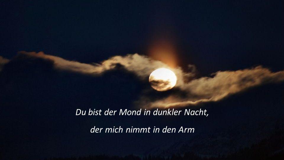 Du bist der Mond in dunkler Nacht, der mich nimmt in den Arm