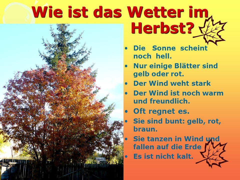 Wie ist das Wetter im Herbst