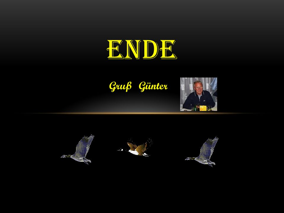 ende Gruß Günter