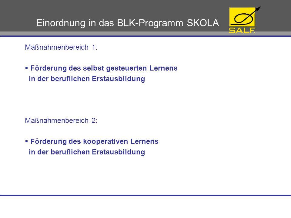 Einordnung in das BLK-Programm SKOLA