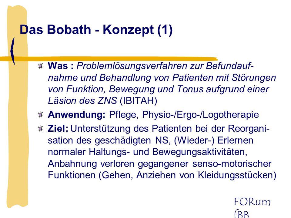 Das Bobath - Konzept (1)