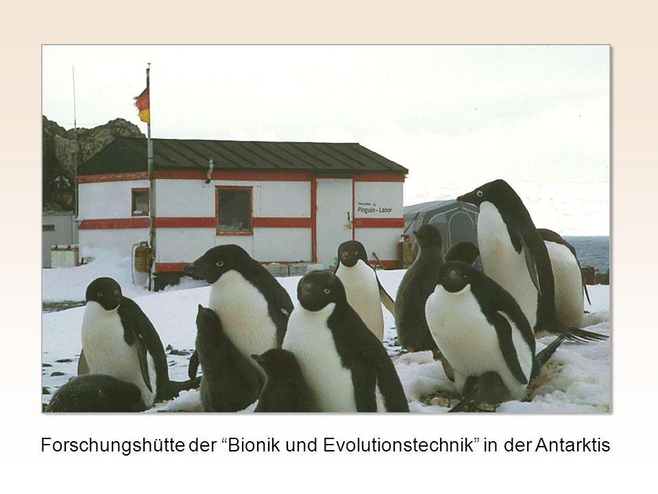 Forschungshütte der Bionik und Evolutionstechnik in der Antarktis