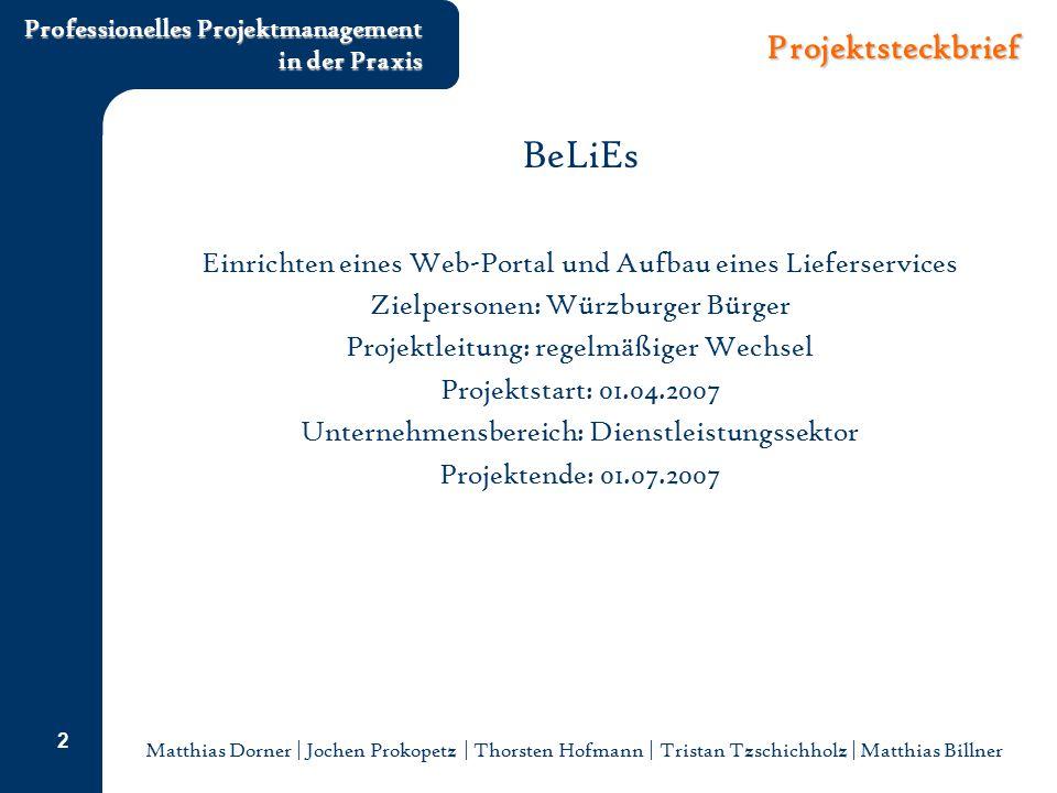 BeLiEs Projektsteckbrief