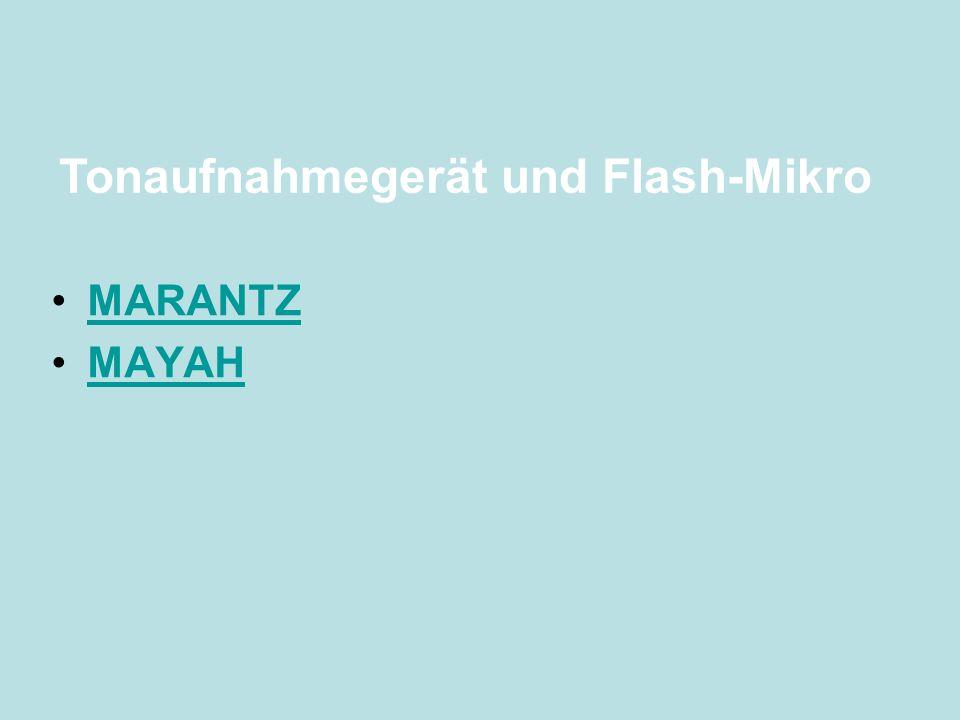 Tonaufnahmegerät und Flash-Mikro
