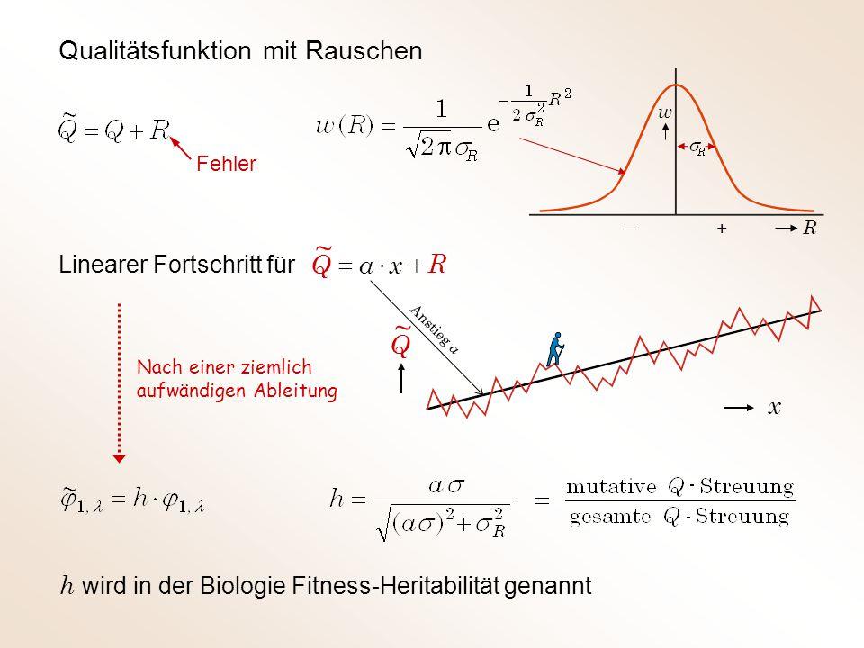 ~ ~ Qualitätsfunktion mit Rauschen R + × = x a Q Q x