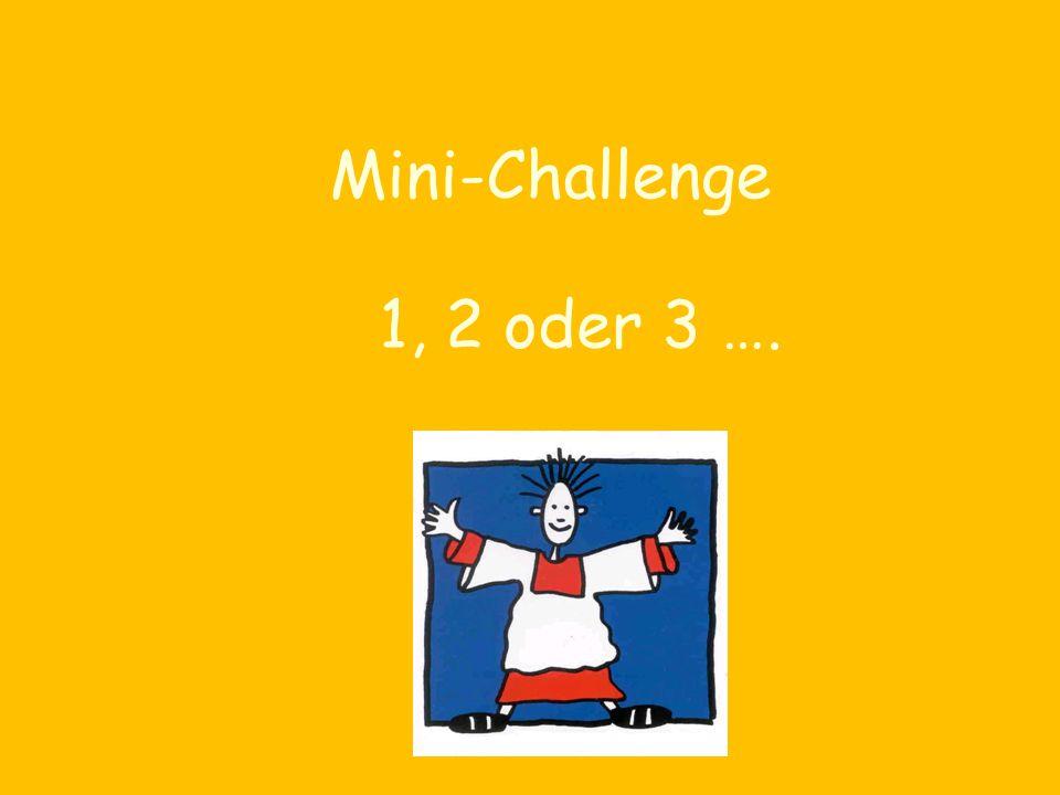 Mini-Challenge 1, 2 oder 3 ….