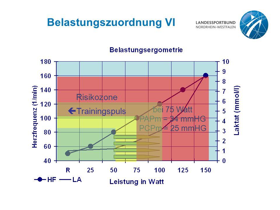 Belastungszuordnung VI