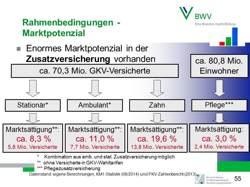 Rahmenbedingungen - Marktpotenzial