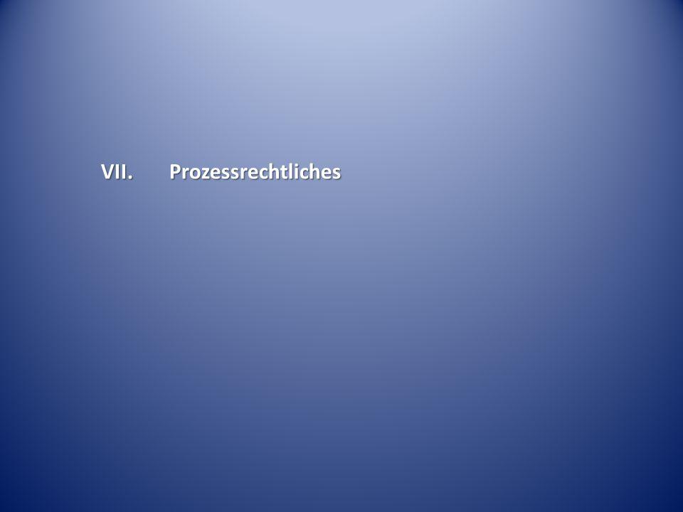 VII. Prozessrechtliches