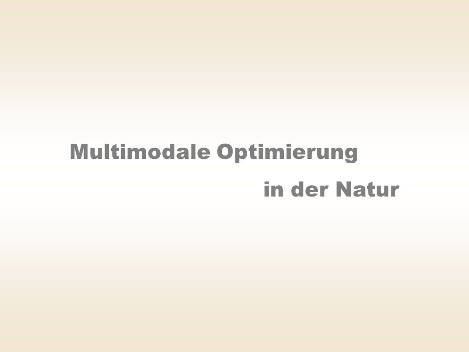 Multimodale Optimierung