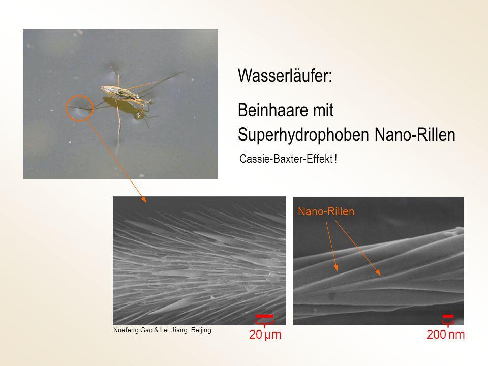Superhydrophoben Nano-Rillen