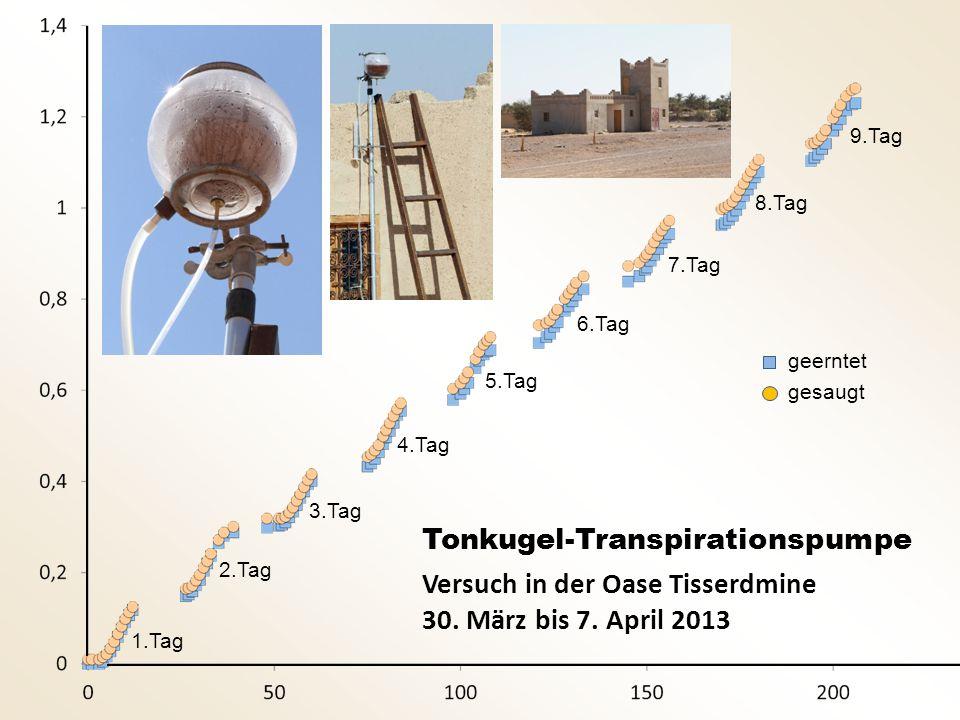 Tonkugel-Transpirationspumpe