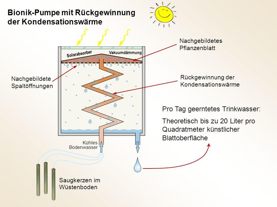 Bionik-Pumpe mit Rückgewinnung der Kondensationswärme