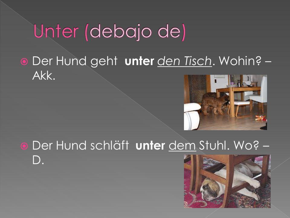 Unter (debajo de) Der Hund geht unter den Tisch. Wohin – Akk.
