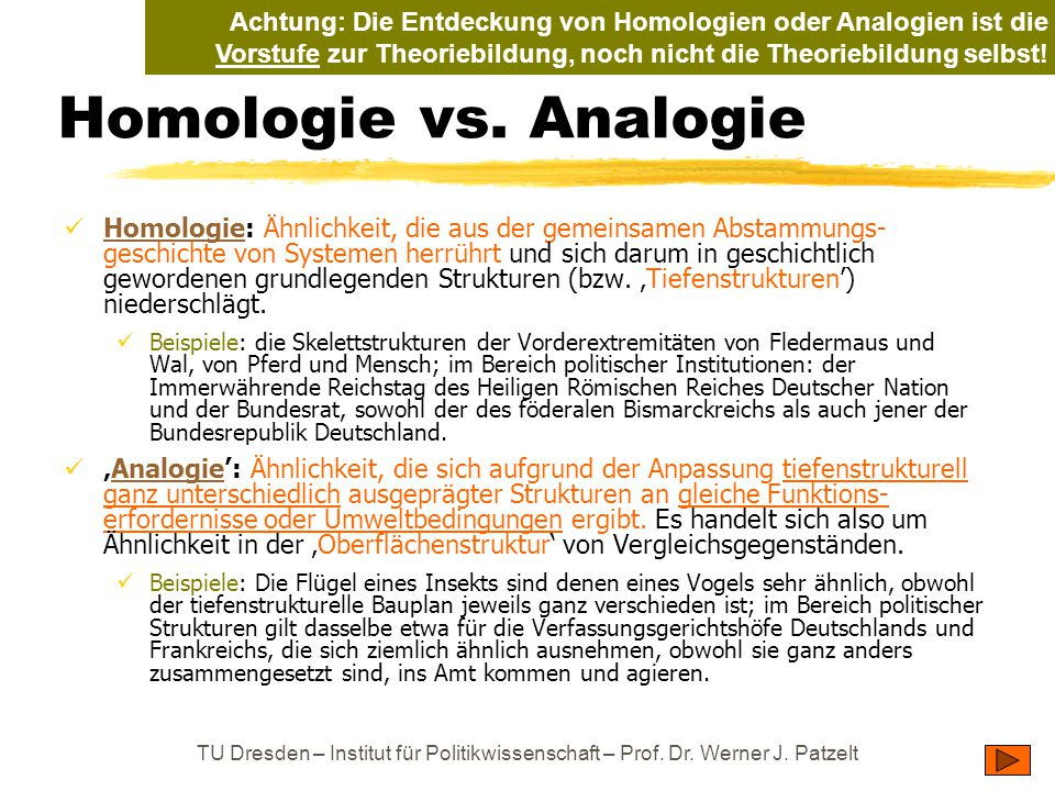 Achtung: Die Entdeckung von Homologien oder Analogien ist die Vorstufe zur Theoriebildung, noch nicht die Theoriebildung selbst!