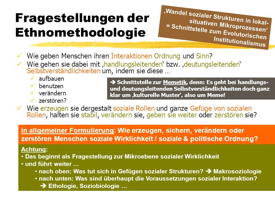 Fragestellungen der Ethnomethodologie