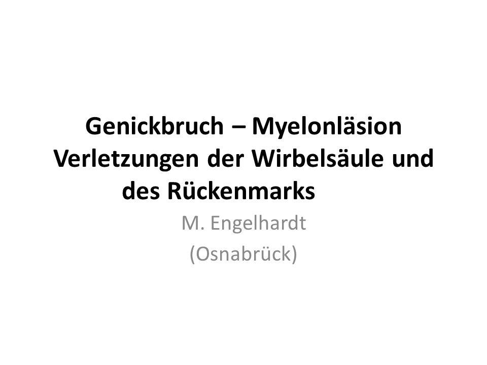 M. Engelhardt (Osnabrück)