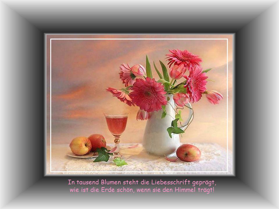 In tausend Blumen steht die Liebesschrift geprägt, wie ist die Erde schön, wenn sie den Himmel trägt!