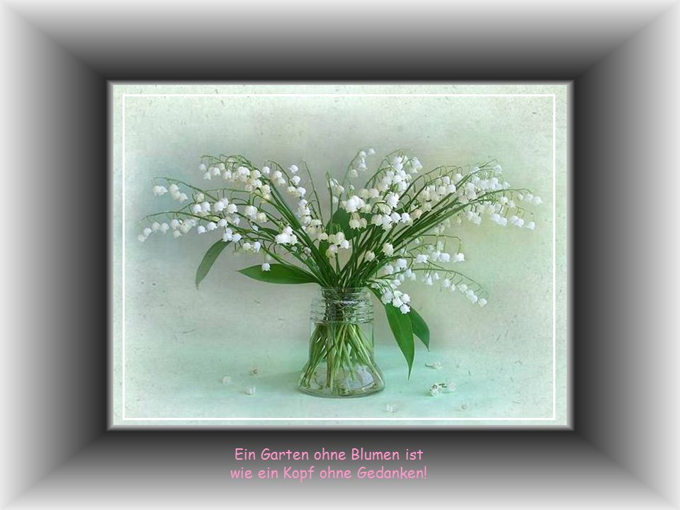 Ein Garten ohne Blumen ist wie ein Kopf ohne Gedanken!