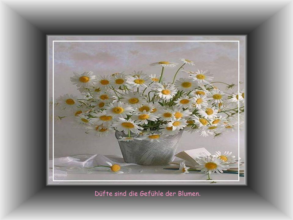 Düfte sind die Gefühle der Blumen.