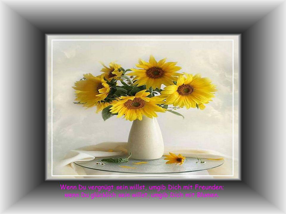 Wenn Du vergnügt sein willst, umgib Dich mit Freunden; wenn Du glücklich sein willst, umgib Dich mit Blumen.