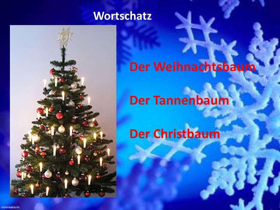 Wortschatz Der Weihnachtsbaum Der Tannenbaum Der Christbaum