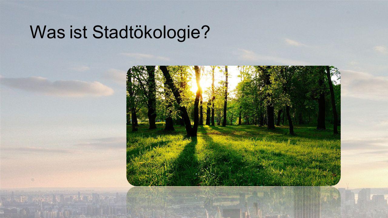 Was ist Stadtökologie