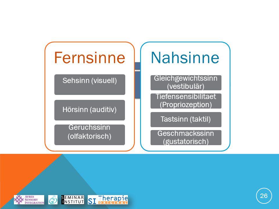 5 Sinne Fernsinne Nahsinne Sehsinn (visuell)