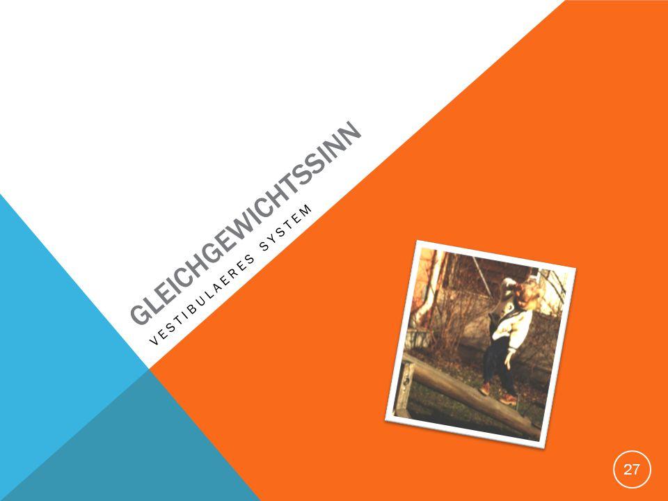 GLEICHGEWICHTSSINN Vestibulaeres system