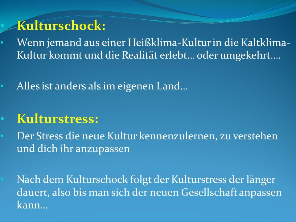 Kulturschock: Kulturstress: