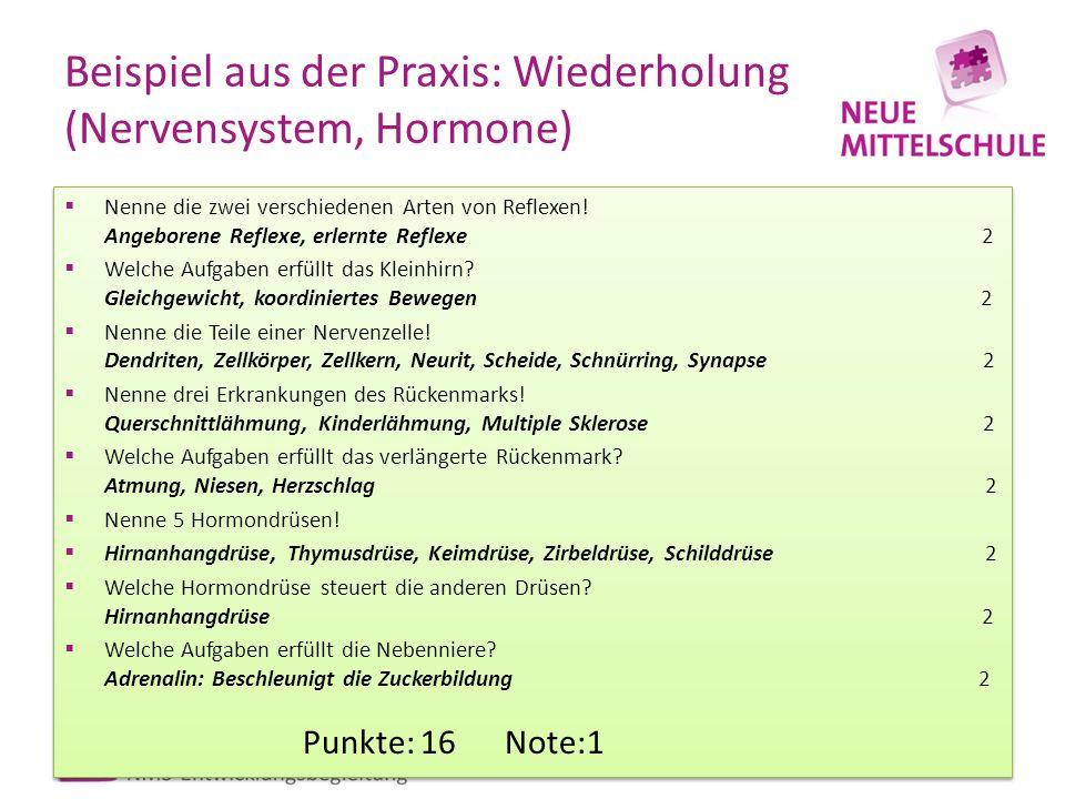 Beispiel aus der Praxis: Wiederholung (Nervensystem, Hormone)
