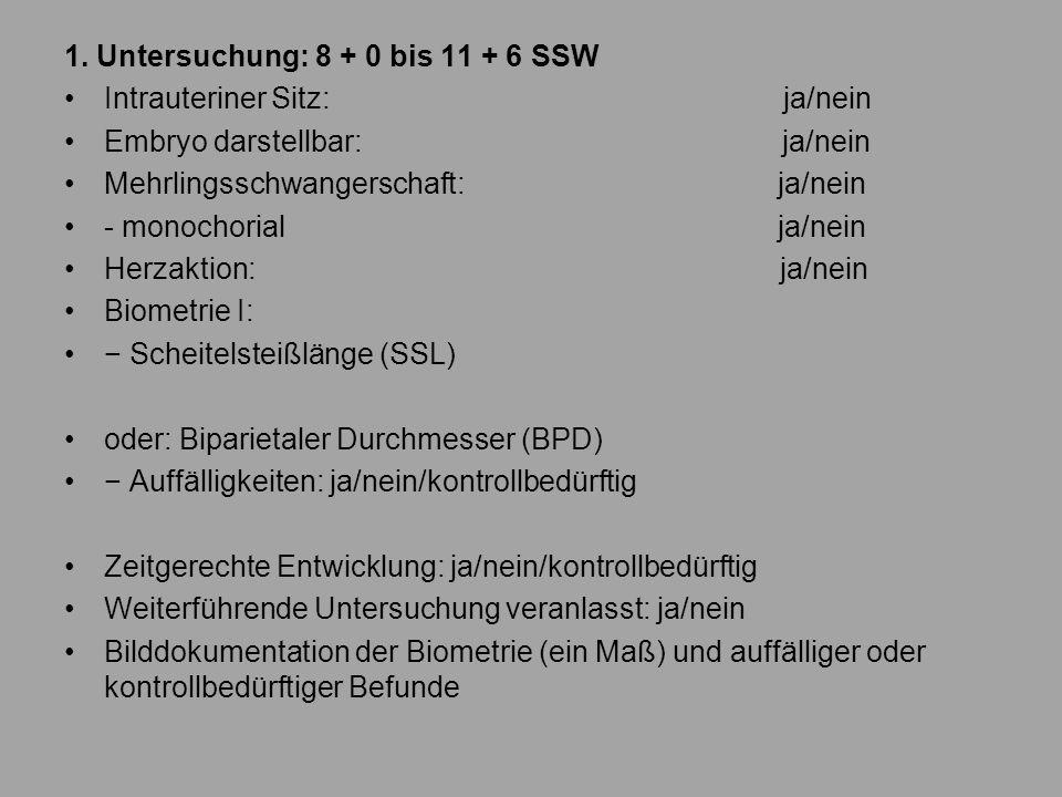 1. Untersuchung: 8 + 0 bis 11 + 6 SSW