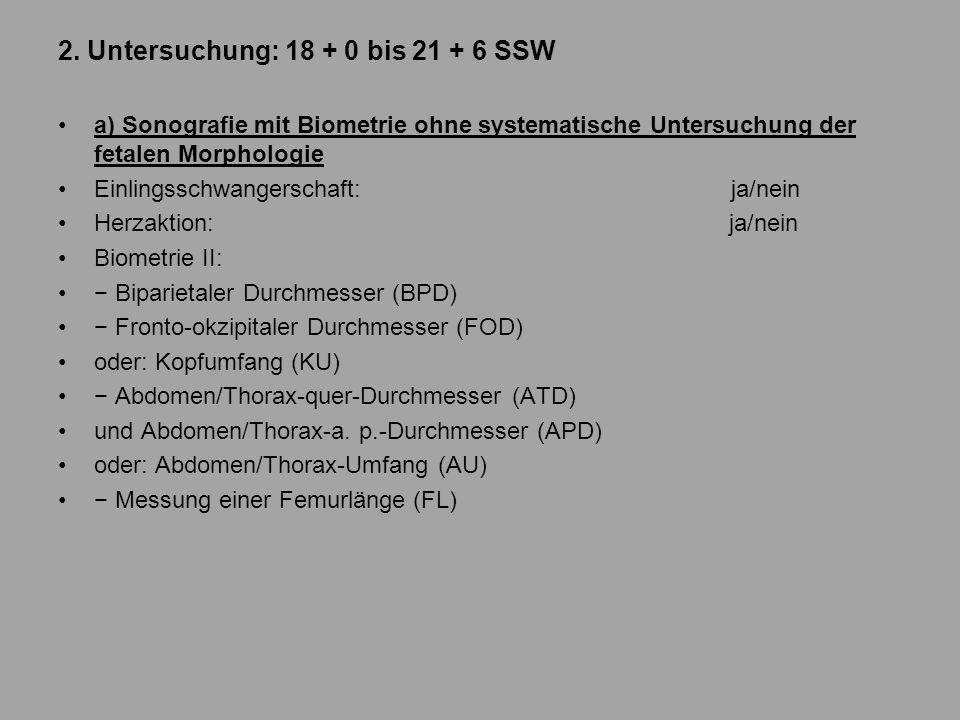 2. Untersuchung: 18 + 0 bis 21 + 6 SSW