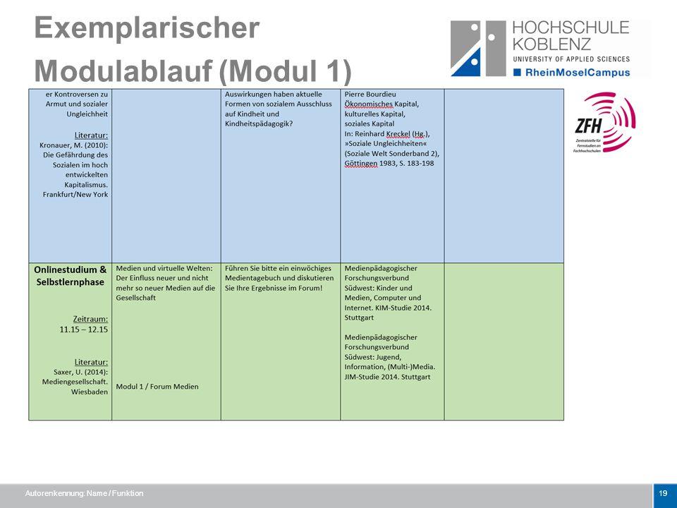 Exemplarischer Modulablauf (Modul 1)